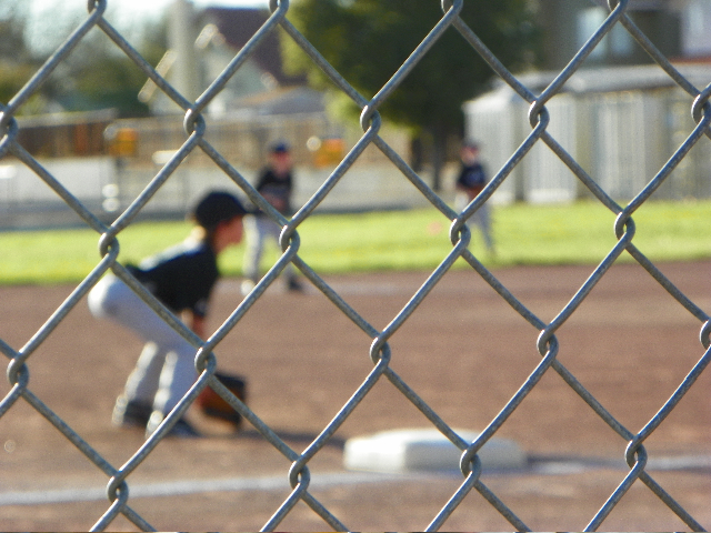 kids baseball fence
