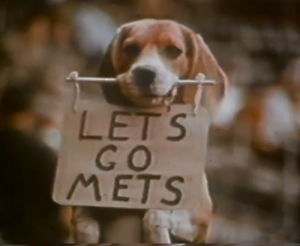 lets go mets dog
