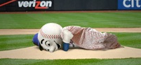 mr.met_sleep