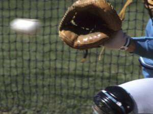 baseball catchers mitt