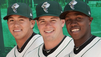 sand gnats roster