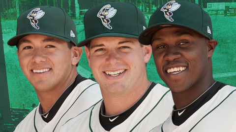 Mets Minors: Sand Gnats Release Roster, Opening Night Notes