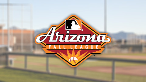 afl arizona