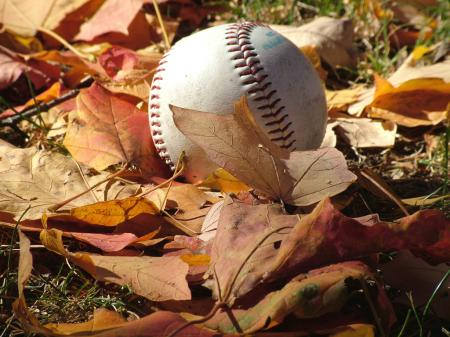 baseball autumn leaves fall