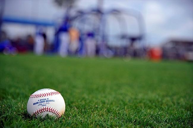 baseball grass spring training