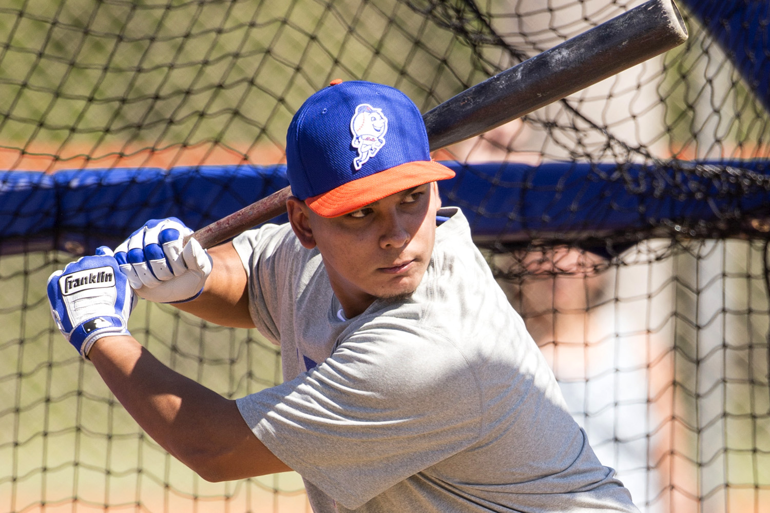 New York Mets Spring Training at their Minor League practice facility located within Tradition Field in Florida