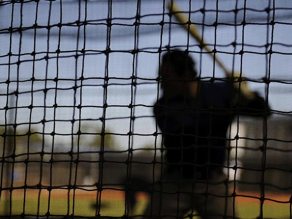 mets batter silhouette hitter netting