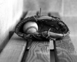 bench glove ball