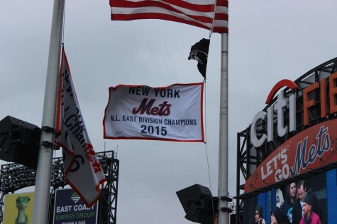 Nl east champions banner pennant
