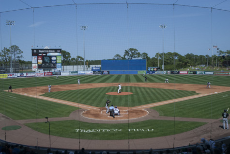 tradition field_24