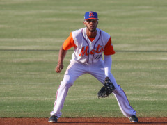Mets Minors Recap: Amed Rosario Makes St. Lucie a Winner